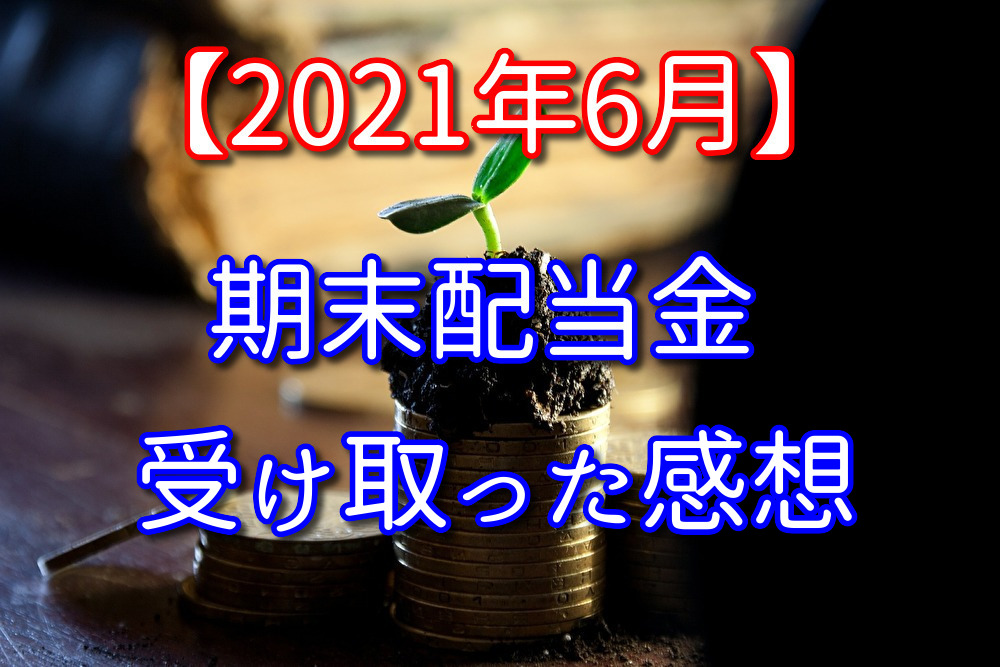 【2021年6月】株式の期末配当金を受け取った感想と銘柄紹介【日米】